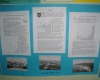 Проект България