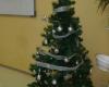 Коледна елха във всяка стая